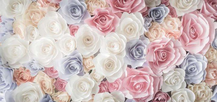 i vari significati dei fiori